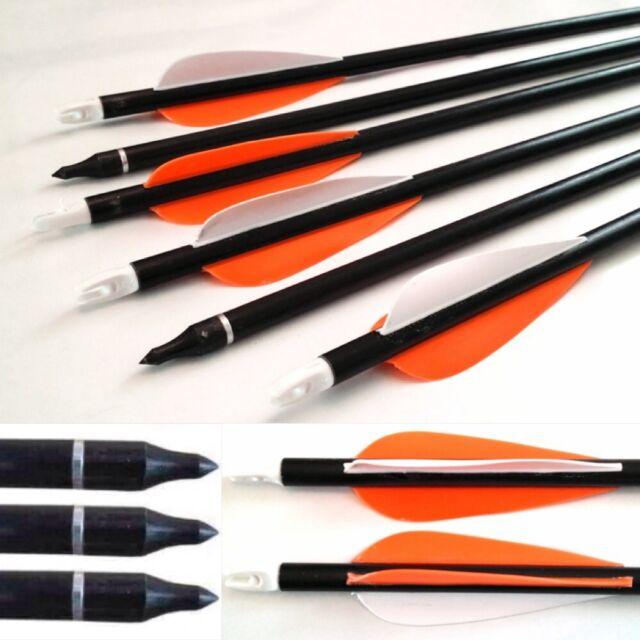 20 fibreglass Archery Arrows Suits Recurve & Compound Bow screw Tip on/off