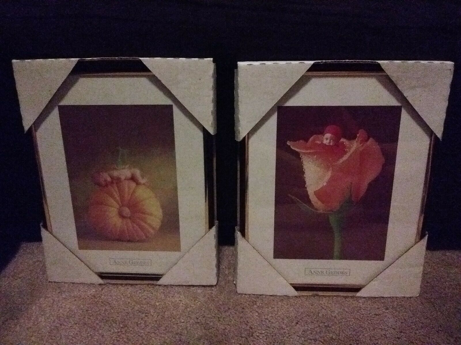 (2) Anne Geddes Framed Wall Pictures Prints * Brand New! * Adorable Home Decor! 6