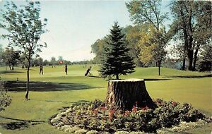 Golf La Prairie >> Details About Portage La Prairie Manitoba Canada Manicured Golf Course Postcard 1960s