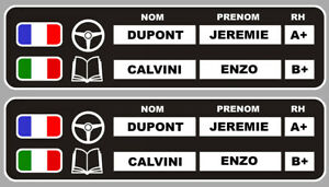 Drapeau Course Blanc Autocollant Sticker 2 X Sets Nom Pilote 006 Copilote