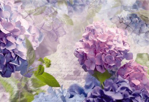 OTAKSA GUELDER ROSE Photo Wallpaper Wall Mural BLUE PURPLE FLOWERS  368x254cm