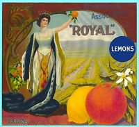 Corona Royal Queen Orange Citrus Crate Label Art Print
