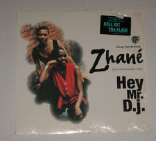 "Zhane 12"" R&B HIP HOP HEAR Hey Mr DJ FLAVOR UNIT 1993 (ROLL WIT THA FLAVA)"