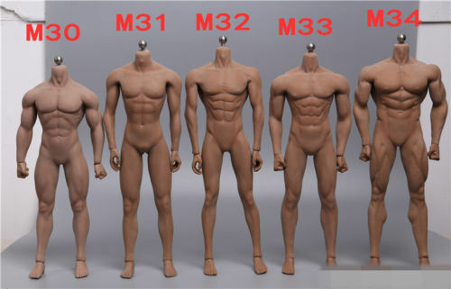 1 6 Male Body Figure TBLeague Phicen Seamless Muscular Steel M30 M31 M32 M33 M34