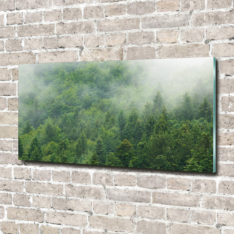 Acrylglas-Bild Wandbilder Druck 140x70 Deko Blaumen & Pflanzen Mysteriöser Wald