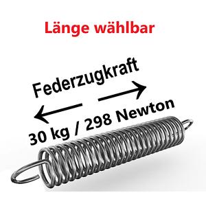 12-24cm Edelstahl  Spiralfeder Ruckdämpfer Zugdämpfer Zugkraft 30 kg Länge ca