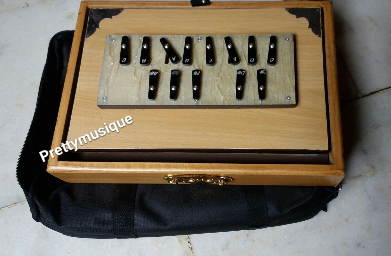 SHRUTI BOX with a GIG BAG & CASE BOX UND FREIE SHIPPING