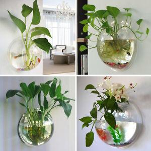 vase suspendu verre fleur plante hydroponique boule pot aquarium mur maison d co ebay. Black Bedroom Furniture Sets. Home Design Ideas