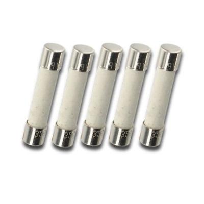 2amp pack of 10 pcs T2a 2A 250V Glass fast-blow fuse 30 x 6 mm 2A