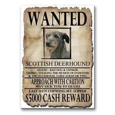 Scottish Deerhound Wanted Poster Fridge Magnet