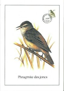 FDC-2577-Oiseau-Buzin-sur-gravure-format-A4