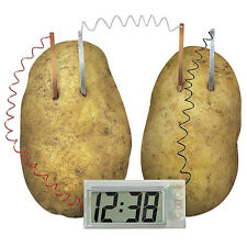 Potato Powered Clock Novel Green Science Experiment Kit Kids Lab Battery Tool