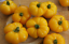 Jaune-Negib-Tomato-A-Very-Popular-Variet-from-France-Australian-Grown-Seeds
