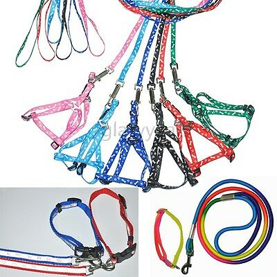 6 Colors Dog Cat Harness Collars Leash Safety Reflection Set Rope Bones Paws