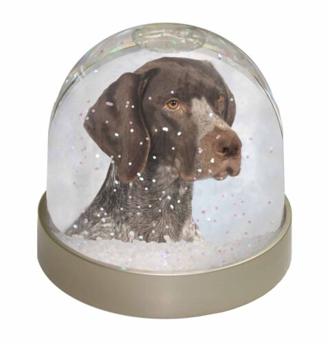 German Pointer Dog Photo Snow Globe Waterball Stocking Filler Gift AD-PG2GL