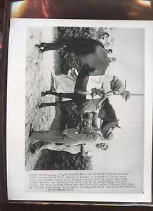 Original Feb 18 1956 Nashua Wins Horse Racing Wire Photo