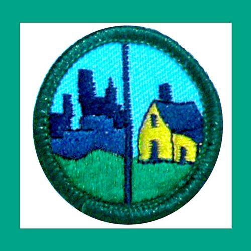 HUMANS and HABITATS Girl Scout 2001 Jr Jade BADGE Houses Condos Multi=1 Ship