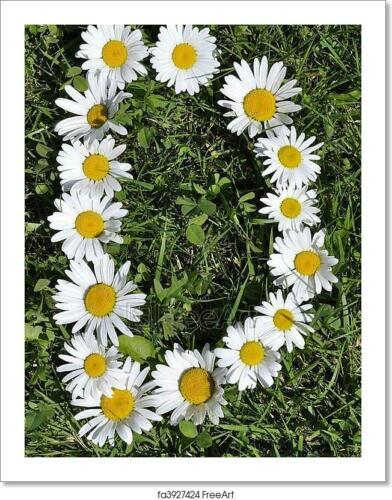 Letters Of Daisies Art Print Home Decor Wall Art Poster