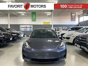 2020 Tesla Model 3 STANDARD PLUS NAV AUTOPILOT HIFI PANOROOF CARAOKE 