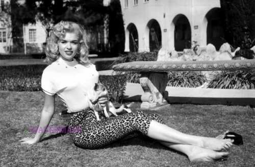 JAYNE MANSFIELD AMERICAN ACTRESS SITTING WITH DOG IN HER LAP PUBLICITY PHOTO