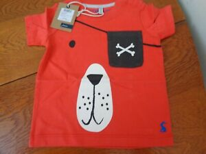 Joules-Baby-Boy-T-Shirt-Age-6-9-months-BNWT