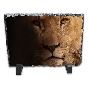 Lion-Portrait-Rock-Slate-Photo-Frame-Rectangle