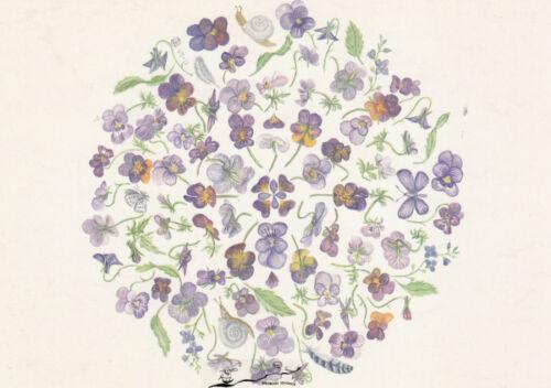 Blumen Horn-Veilchen-Mandala Anna Malten Postkarte