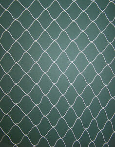 "12/' X 12/'   MULTI NYLON  POULTRY AVIARY NETTING  1 3//4/""  # 208"