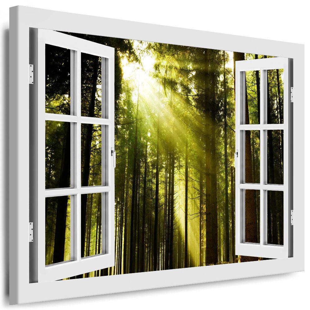 Bild auf Leinwand - Fensterblick Wald - AA0282