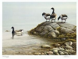 CANADA-US-1985-2006-COMPLETE-COLLECTION-OF-22-CANADA-LIMITED-EDITION-DUCK-PRINTS
