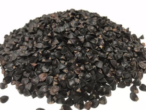 Great for Sprouting ! Buckwheat Seed Unhulled 5 LB-High in Fiber /& Proteins