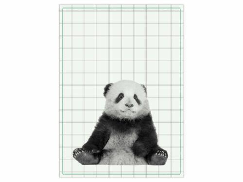 Kakadu Panda hérisson coton 50x70cm Present Time Torchon Küchentuch biche