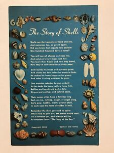 The-Story-of-Shells-Postcard-1956