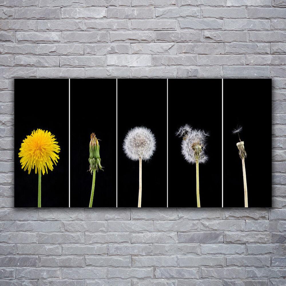 Photo sur toile Tableau Image Impression 120x60 Floral Pissenlit