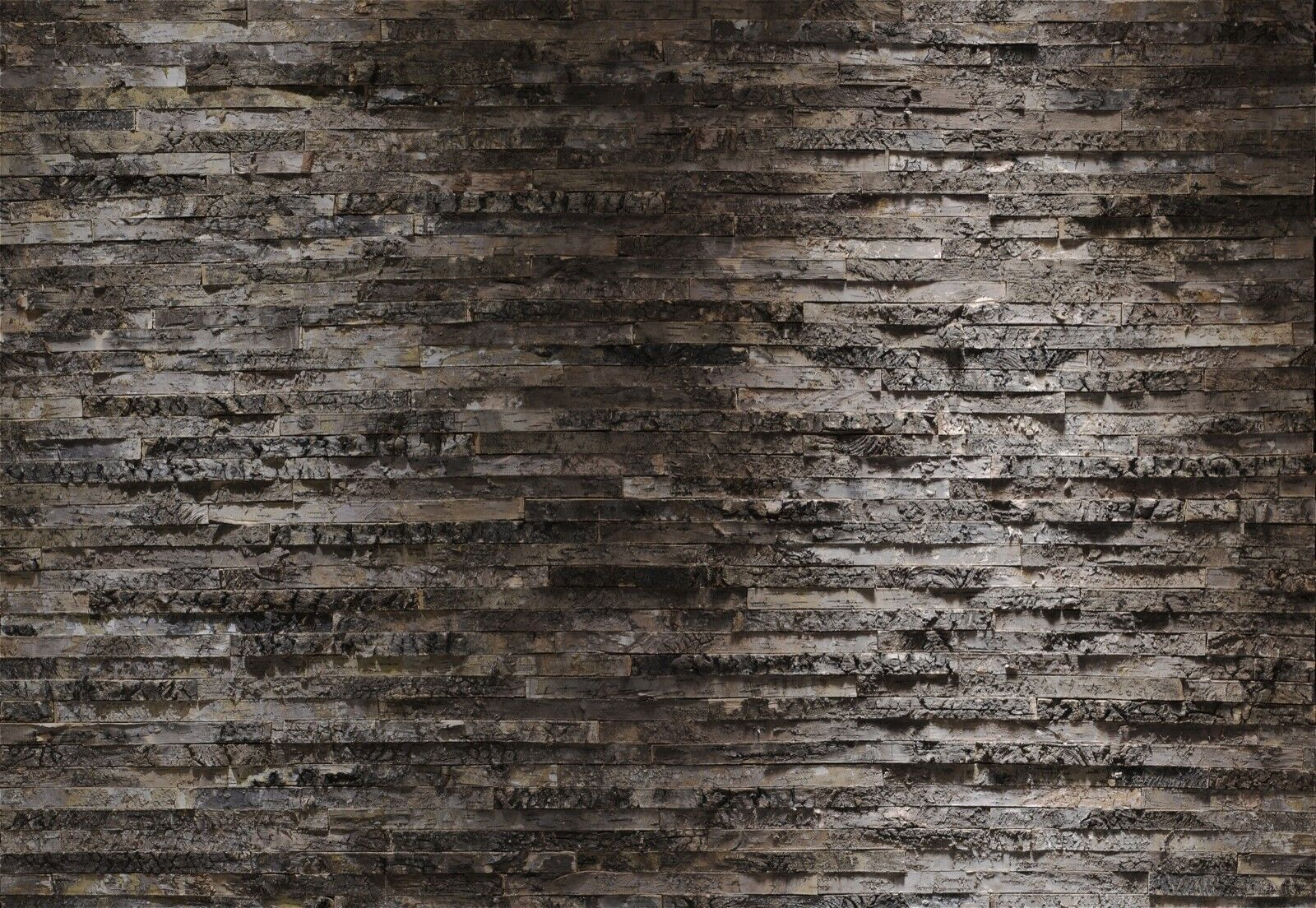 Fototapete Birkenrinde - Holzoptik 368 x 254 cm - inkl. Kleister - Papier