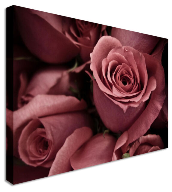 Large Pink Rose Bed Flowers Canvas Wall Art Print Any Size