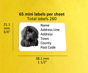 newfoundland 260 personalised dog address labels stickers ebay