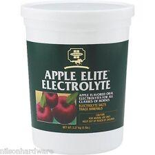 Farnam Apple Elite Electrolyte 5 Lbs Free2dayship Taxfree