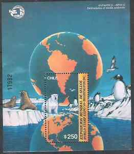CHILE-souvenir-sheet-1989-ANTARTIC-ANTARTICA-ARTIC-BEAR-PENGUINS-MNH