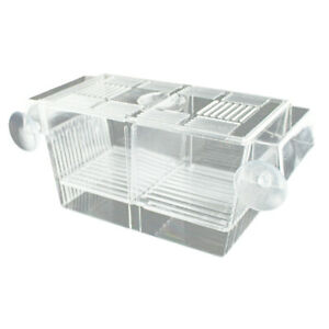 Fish-Incubator-Hatchery-Box-for-Fry-Baby-Small-Fish-Isolation-for-Fish-Tank