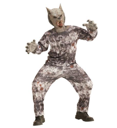 Werwolf Kostüm Verkleidung Jacke Hose Maske Wolf Karneval Größe 158 11-13 years