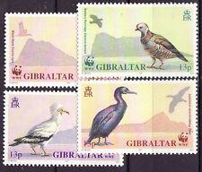 Gibraltar 1991 - MNH - Vogels / Birds  (WWF/WNF)