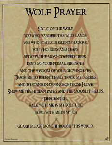 WOLF-PRAYER-Shaman-Animal-Spirit-Poster-Art-8-1-2X11-NATIVE-AMER-Celtic-Wicca
