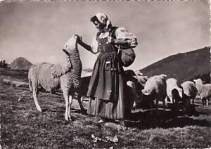 65-cpsm-Types-et-costumes-Pyreneens-La-bergere