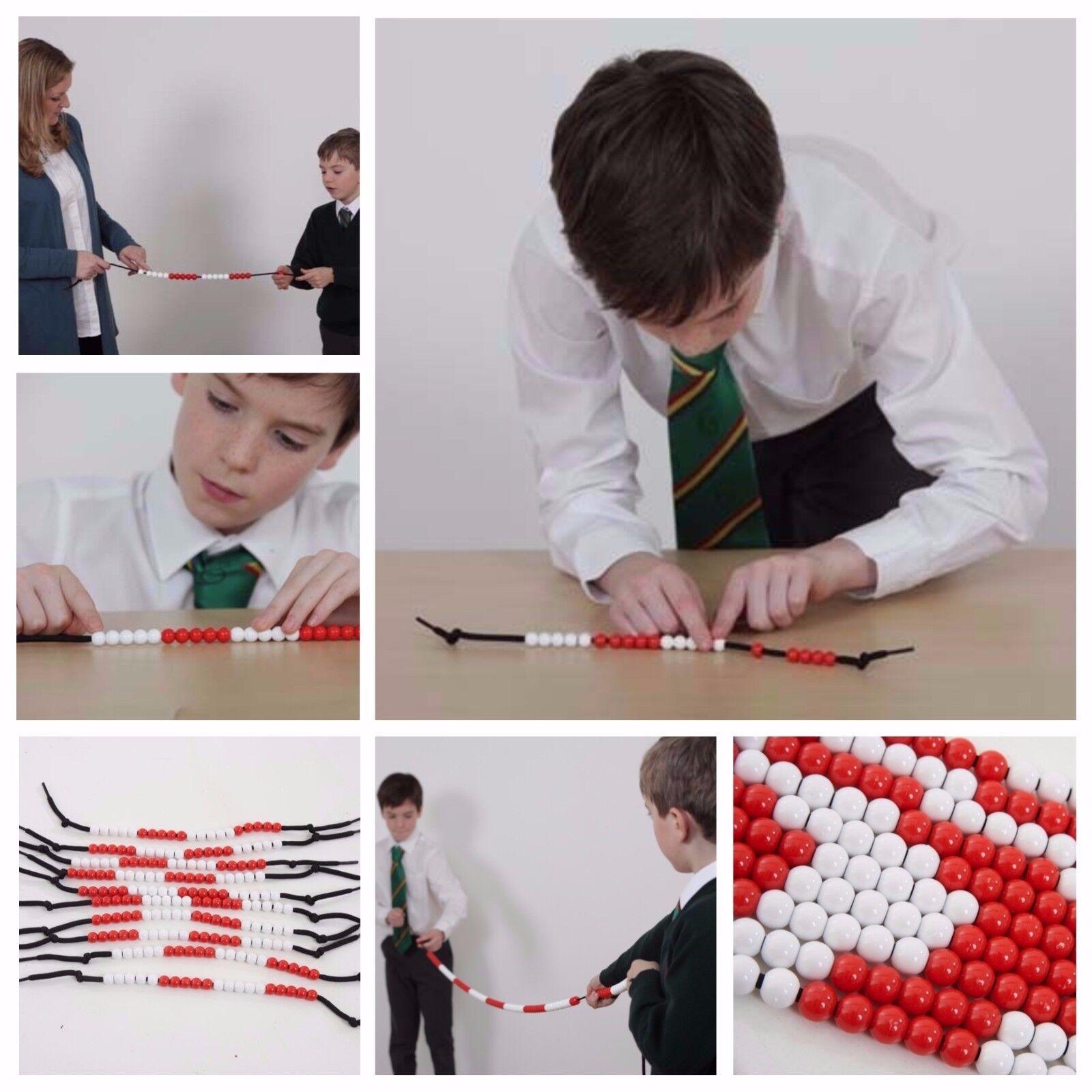 Bead String Tens & Units student Teacher Abacus Singapore Maths Montessori