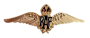 RAF-Royal-Air-Force-Sweetheart-Wings-Gilt-Pin-Badge-MOD-Approved
