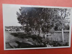 cpa-89-YONNE-Bleneau-la-prairie-vers-1955-60-EXCELLENT-ETAT-DE-COLLECTION