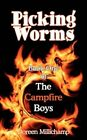 Picking Worms: Book One of the Campfire Boys by Doreen Millichamp (Paperback, 2007)