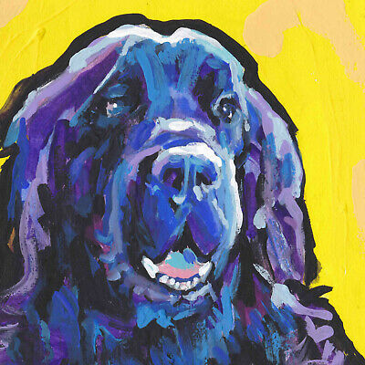 "AD-NF1-C12 Newfoundland Dog 12/""x12/"" Wall Art Canvas Decor Picture Print"