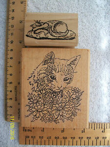 Rubber Stamps   Two Cat Stamps - Newark, Nottinghamshire, United Kingdom - Rubber Stamps   Two Cat Stamps - Newark, Nottinghamshire, United Kingdom